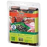Romberg Kokos-Quelltabletten - 50ST 71050 K chilizucht-image-Chilizucht  – Tipps & Tricks zum Chilianbau