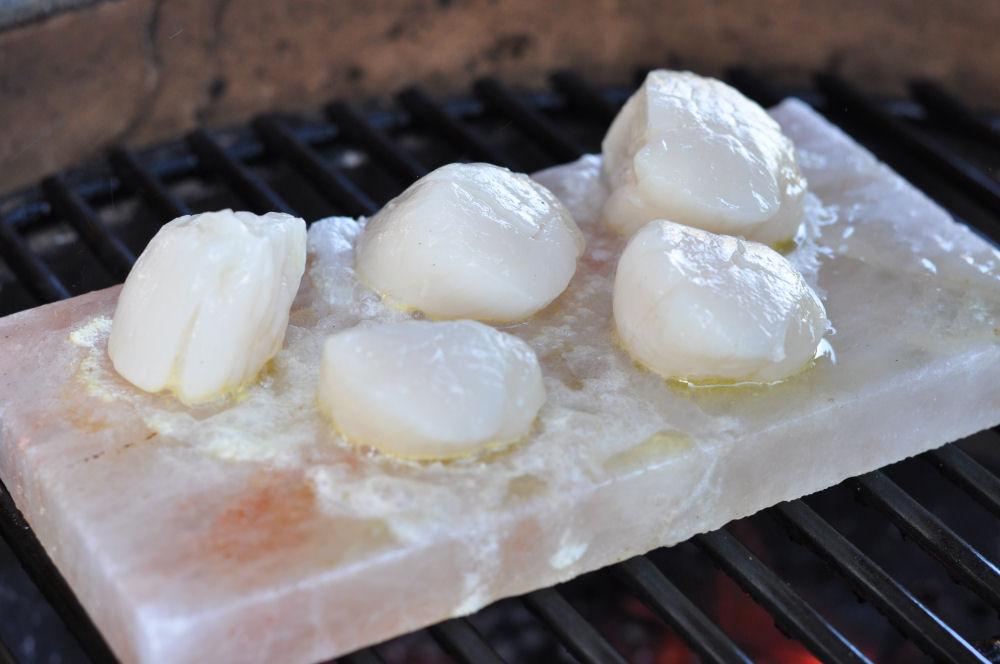 Jakobsmuscheln auf der Salzplanke Jakobsmuscheln von der Salzplanke mit Orangen-Feldsalat-Jakobsmuscheln-Jakobsmuscheln02