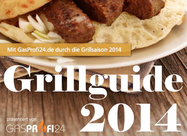 Grillguide BBQPit.de ist Blog des Monats Mai 2014 bei Gasprofi24.de-Blog des Monats-Grillguide