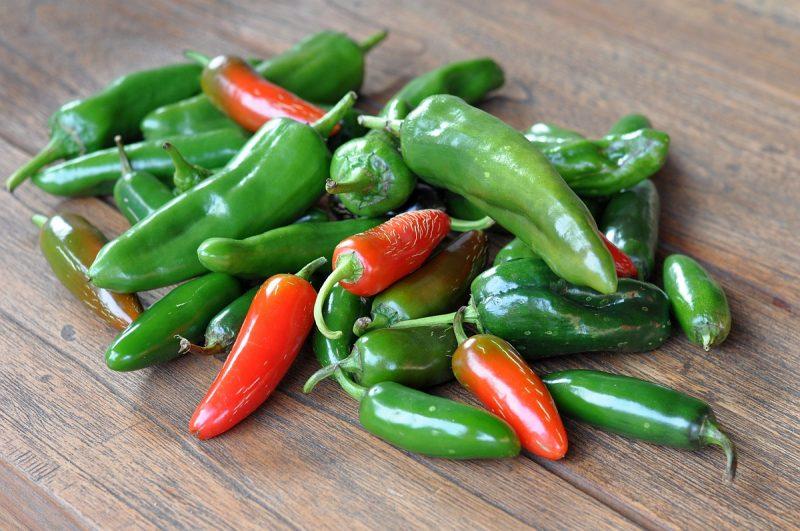 chilizucht-ChilizuchtChilianbau 800x531-Chilizucht  – Tipps & Tricks zum Chilianbau