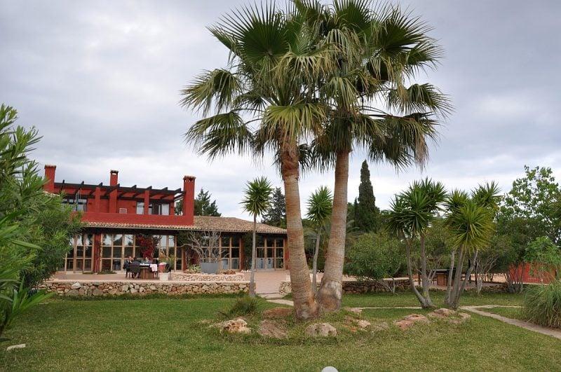 weber grillakademie mallorca-Weber Grillakademie Mallorca 800x531-Weber Grillakademie Mallorca – Grillseminare unter Palmen