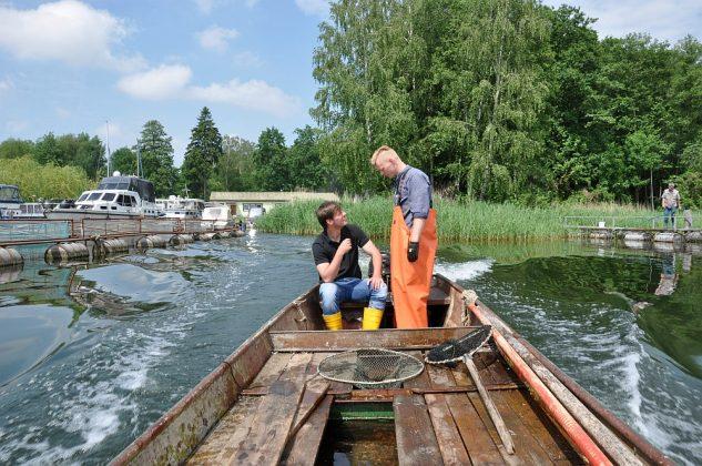 fischerei am wolziger see-Fischerei Wolziger See Blossin 17 633x420-Fischerei am Wolziger See in Blossin bei Berlin