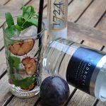 Vodka Tonic – Vodrock mit Tonic, gegrillter Pflaume und Minze-vodka tonic-Vodka Tonic Vodrock gegrillte Pflaume Minze 04 150x150