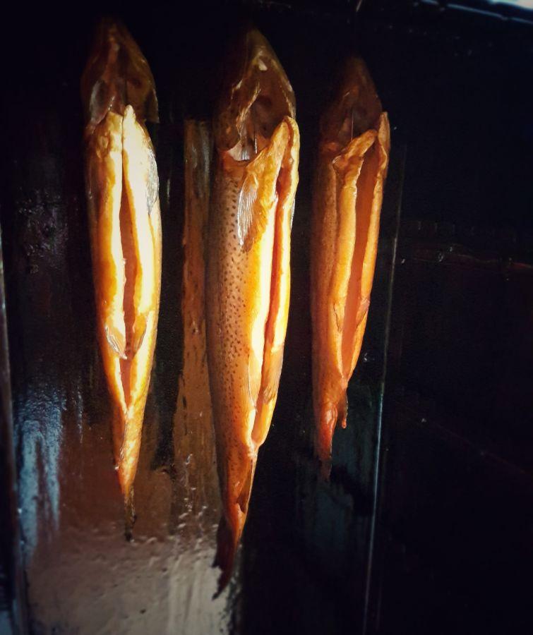 Fisch räuchern Geräucherte Forellen – Anleitung Fische räuchern-geräucherte forellen-Geraeucherte Forellen Anleitung Fische raeuchern 05