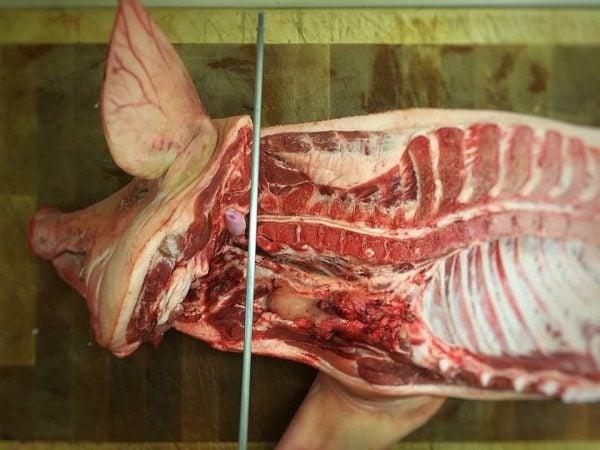 Boston Butt – Schweineschulter im amerikanischen BBQ-Zuschnitt-boston butt-BostonButt 01 600x450