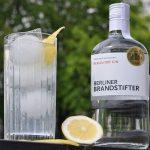 Gin Fizz Gin Fizz – der erfrischende Cocktail-Klassiker-gin fizz-GinFizz 150x150